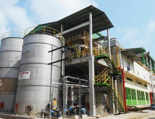 Pindo Deli Pulp & Paper Mills Building
